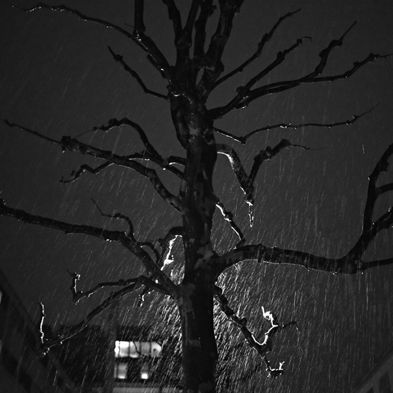 wet winter
