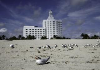 Travel Florida-2