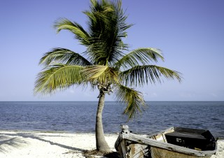 Travel Florida-4
